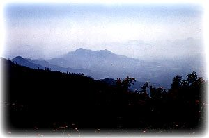 Captivating Coorg