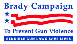 Our Great American Shame: Gun Control