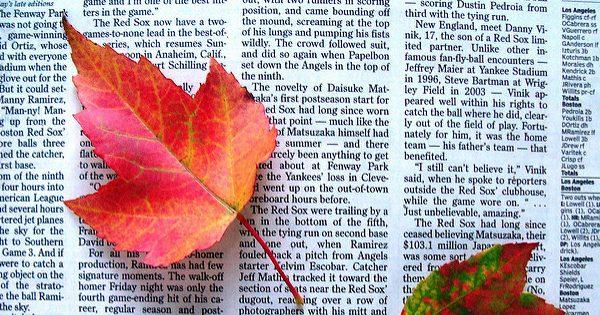 Dallas Morning News – a Poem
