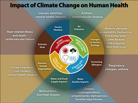 Climate Change CDC infographic