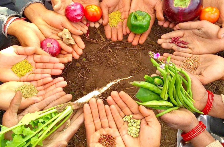 Local seeds and produce (Image by Drona Chetri from Navdanya)