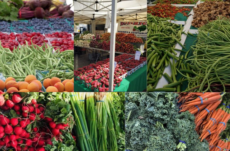 Newark Farmer's Market Haul (Image by Mona Shah)