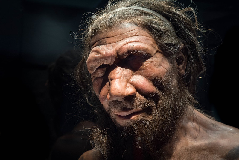 Neanderthal DNA Present in South Asians is a Risk Factor For COVID-19