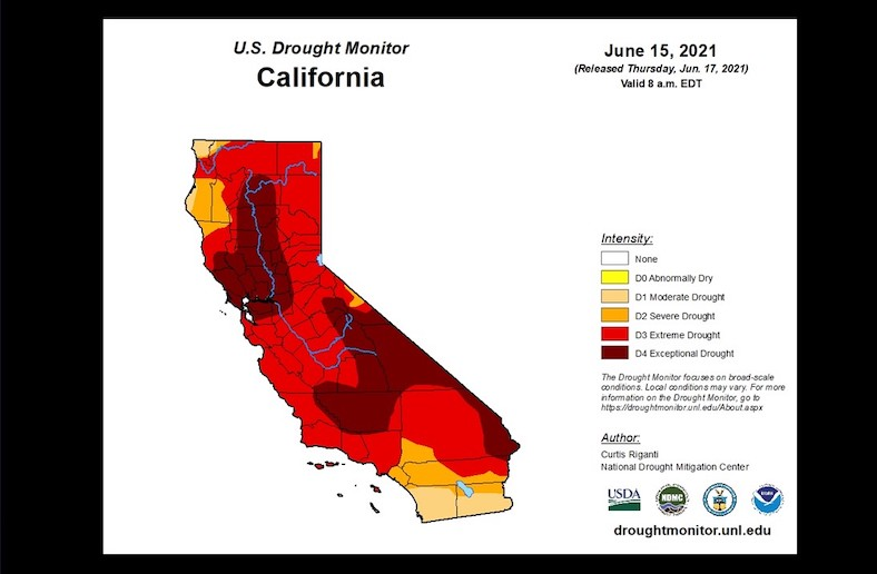 Heat, Dust & Death: What The Drought Could Bring This Summer