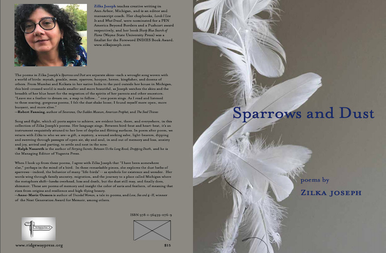 Book cover of Zilka Joseph's 'Sparrows and Dust'